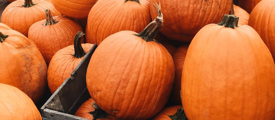 Herbstliche Kürbis-Apfel-Zimt Schnecken - pflanzlich & zuckerfrei