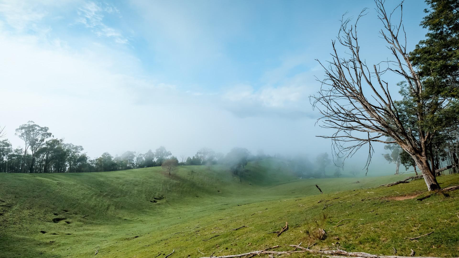 New Start, Misty Morning