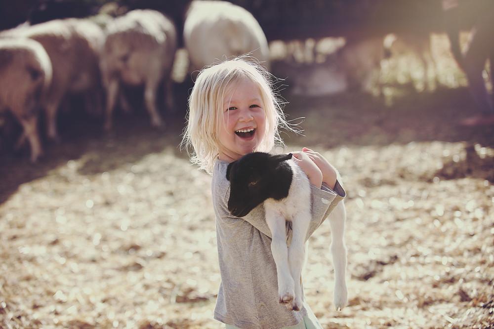 Menina segurando um cordeirinho.