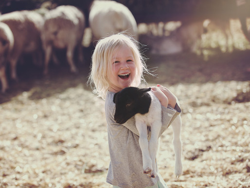 Growing up on a farm is good for your immune system?