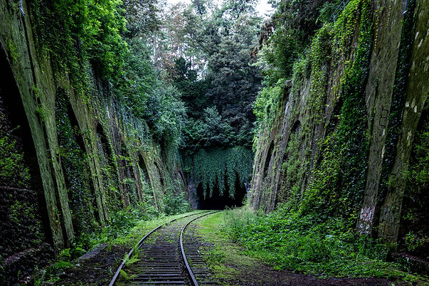 Ferrocarril Abandonado