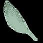 Hellgrünes Blatt
