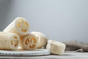 Luffa Sponges