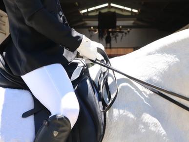 Hevosen nesteytyksestä huolehtiminen kisoissa