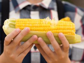 Maïs | Een gezond of ongezond gewas?
