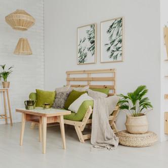 Home Decor Ideas :: How To Have Happy Houseplants
