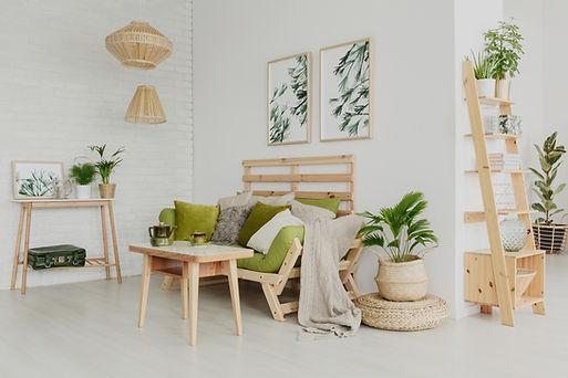 online plant nursery bangalore