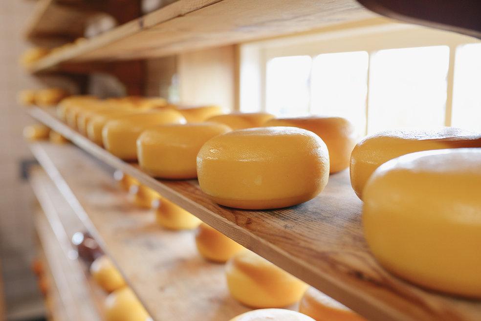 tienda de quesos