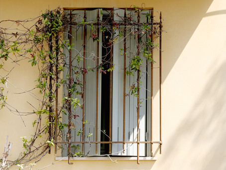 Saturday Writing Prompt -13th February - Window