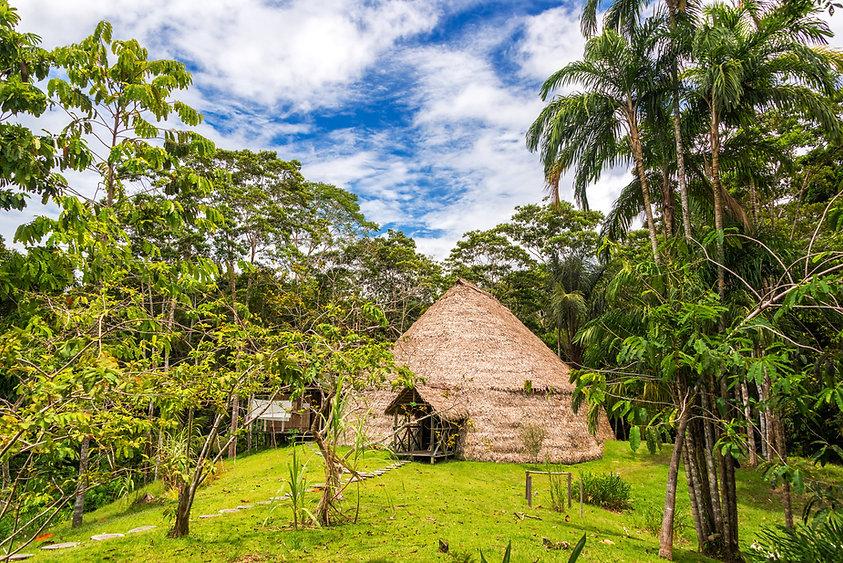 Dschungelhütte