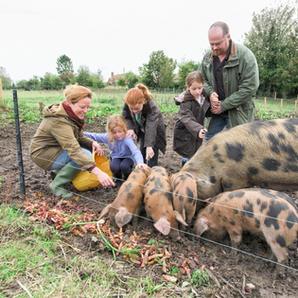 Farm Animal Protection