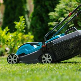 End of tenancy gardening
