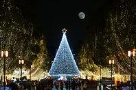 クリスマスツリーのライトアップ