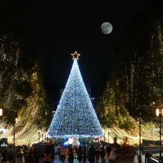 Gran árbol de navidad