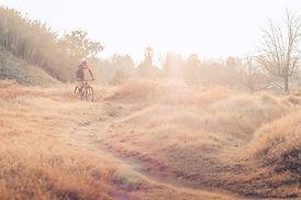自然の中でサイクリング