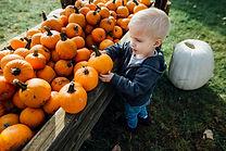 Boy Holding Pumpkin