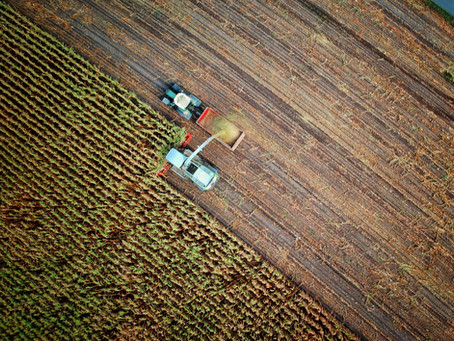 Agriculture is growing fast – but can we keep up?