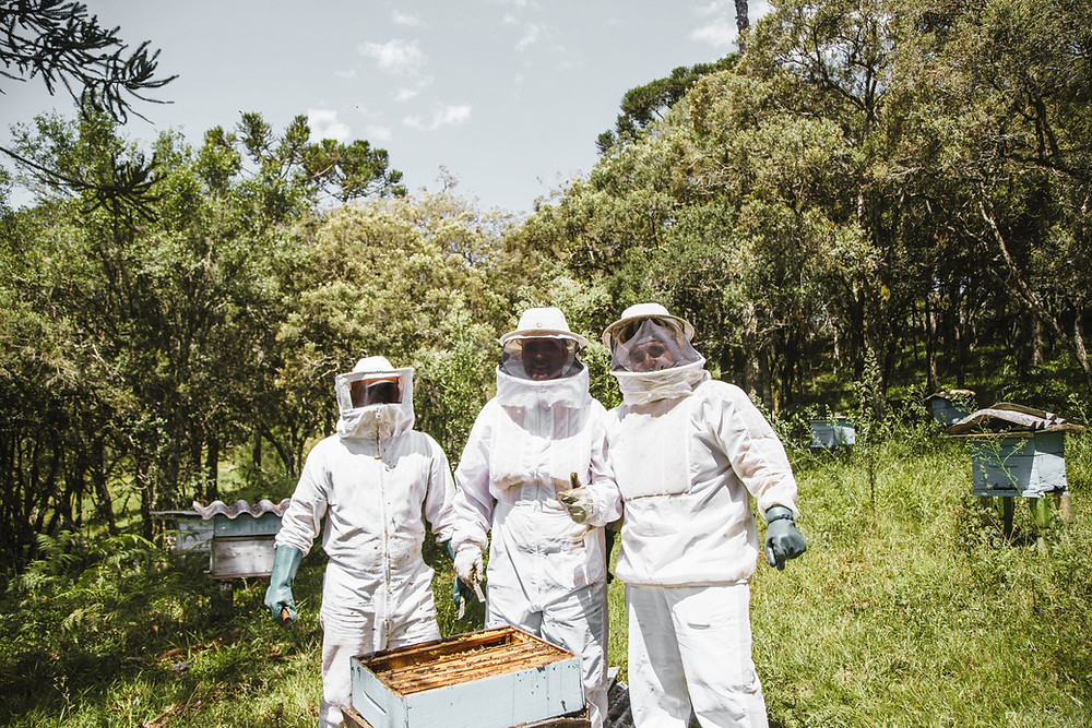 Couple enjoying a beekeeping experience in the National Forest