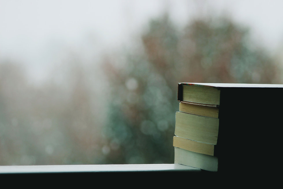 a stack of books in front of a window. outside the window is a wash of gray and green