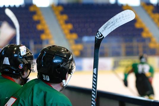 Roller Hockey Players