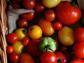 Möösli- Tomaten