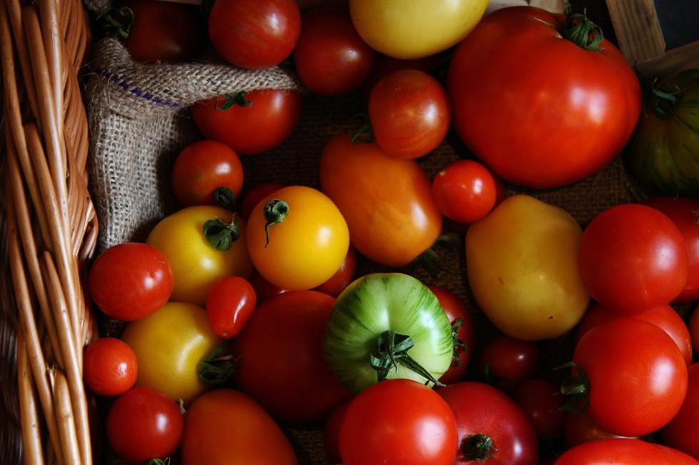 Salad crops and herbs
