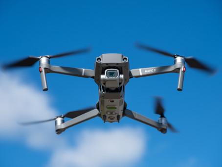 Dronepiloot brengt ode aan 'magische' Kroezeboom bij zonsopkomst