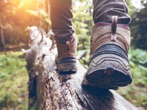 7 bienfaits de la randonnée pédestre