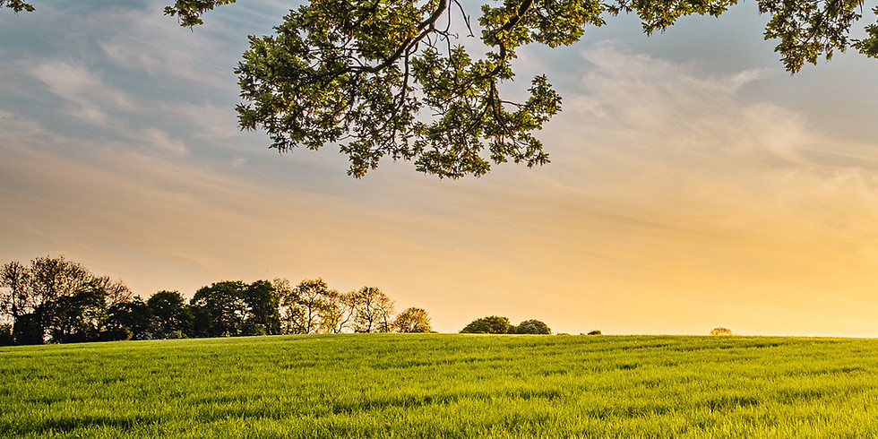 Adding Profitability, Increasing Soil Health - Iowa