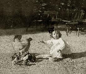 Flicka med höna och kycklingar
