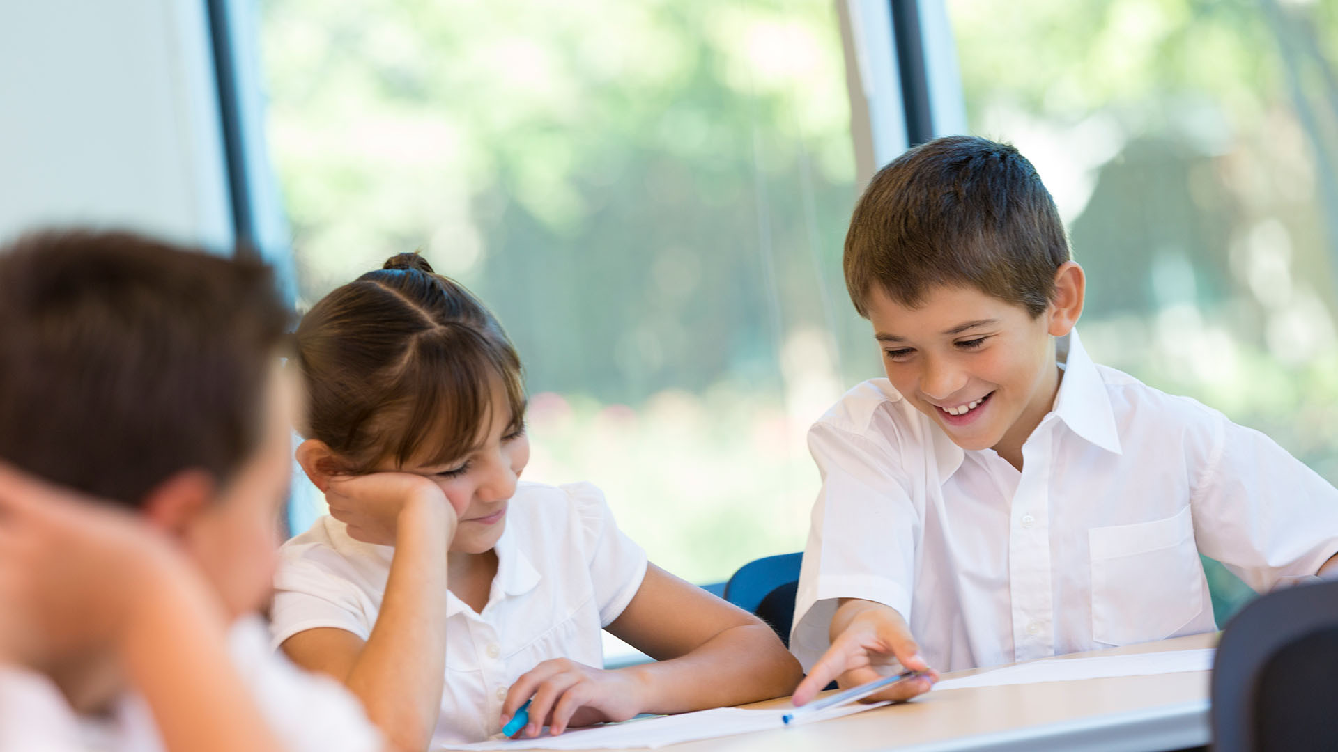 English Language Arts (ELA) - Grades 6-8