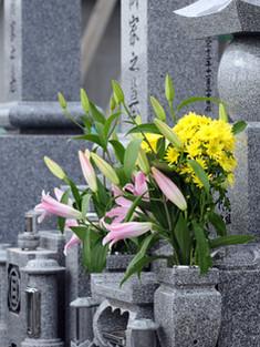 Цветы на надгробии