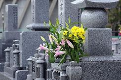 Fiori su una pietra tombale