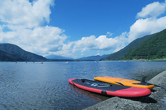 Paddle Boards by Lake