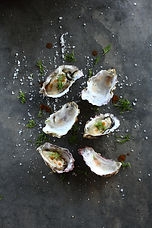 Shop for Fresh or Frozen Oysters at Triton Seafood Market