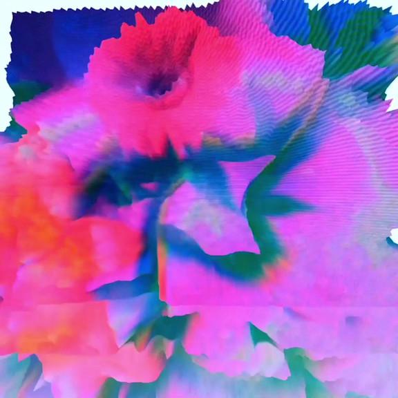 Blumen-Glitch