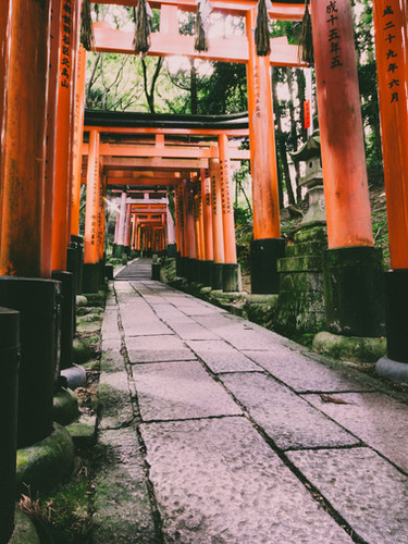 Shinto Pathway - Japanese tradition