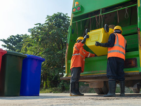 RBWM Changes to Black Bin Collections