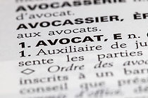 Livre des lois françaises