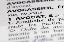 Libro de leyes francesas
