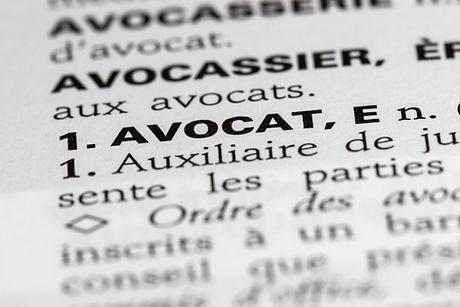 Книга французских законов