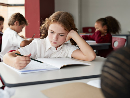 Supporting A Young Child with Possible Learning Differences : How Is Alfie Doing in School?