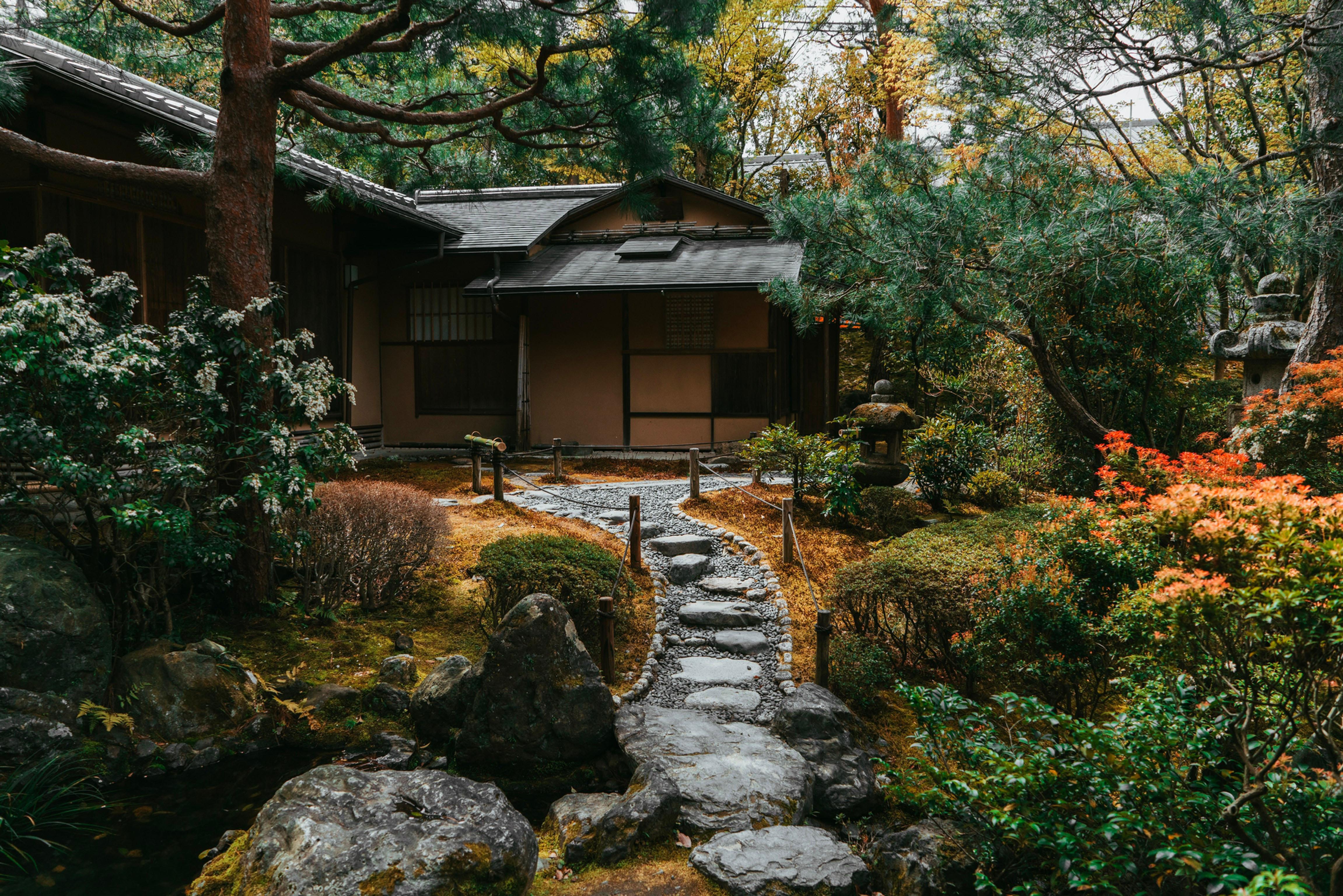 11月体験講座(都内 西新井/オンライン講座同時開催)