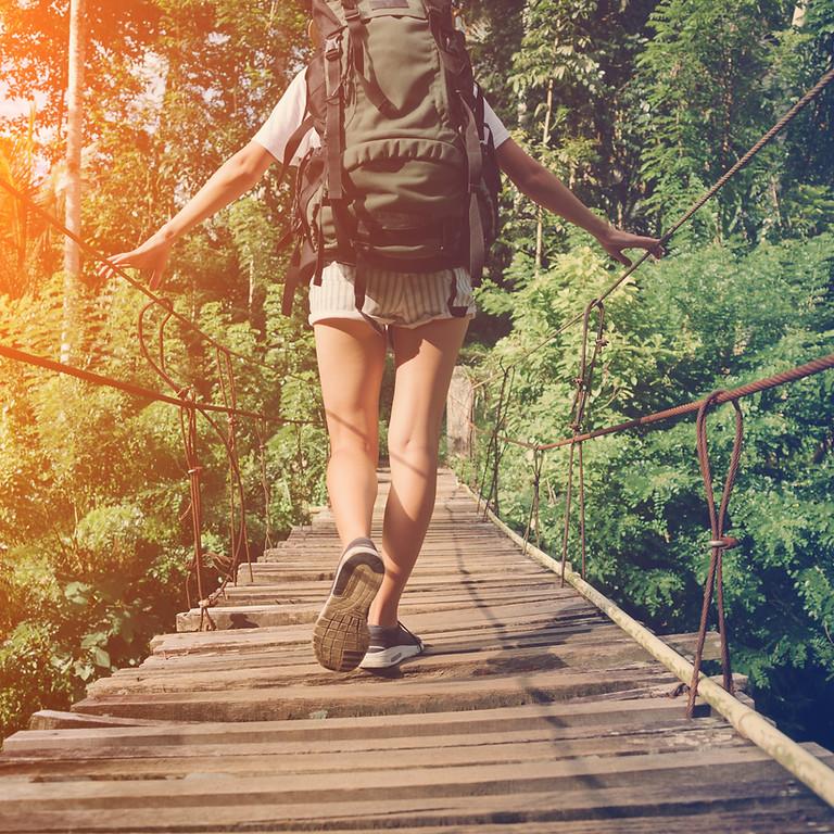 Friday Nature Walks