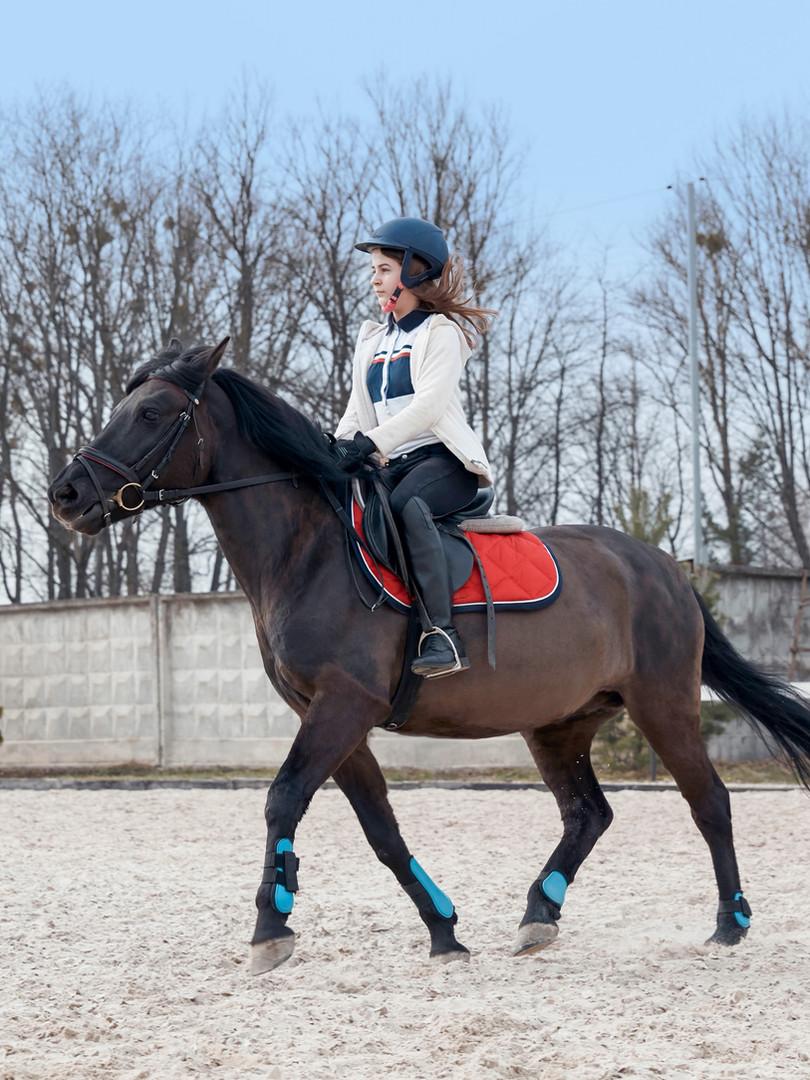 Horseback Riding Class