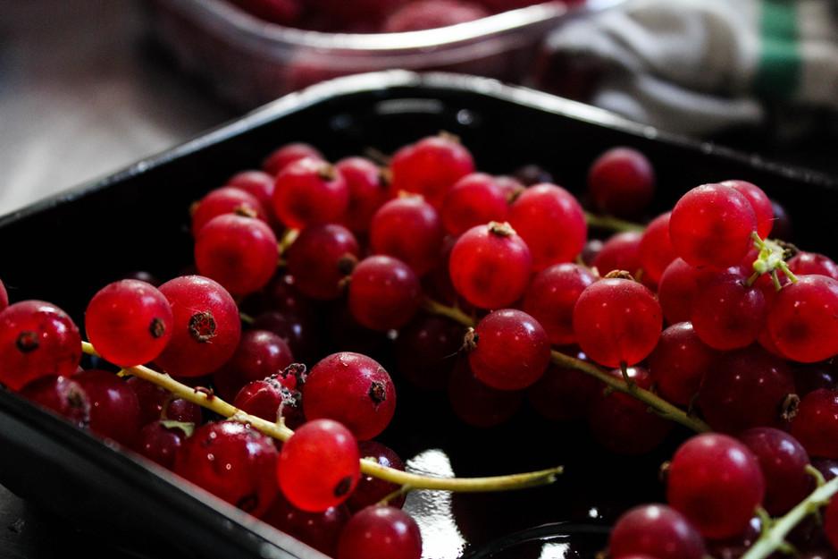 Cranberry Comfy