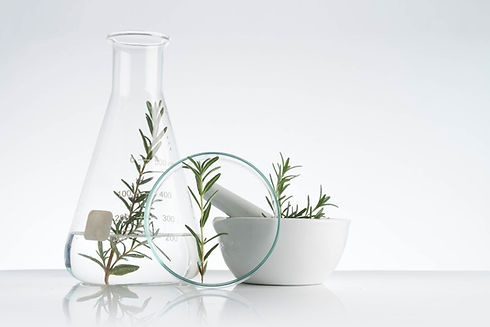 Rosemary Cosmetics set out on a white background.