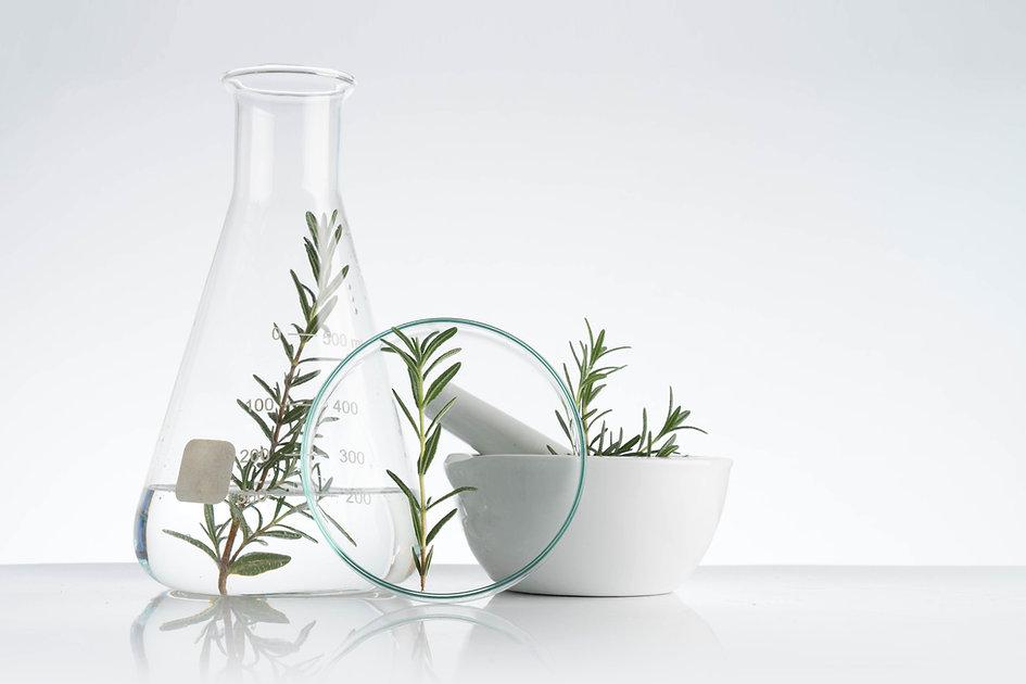 Rosemary Cosmetics