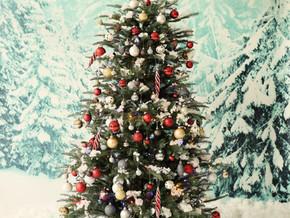 Probability of a White Christmas