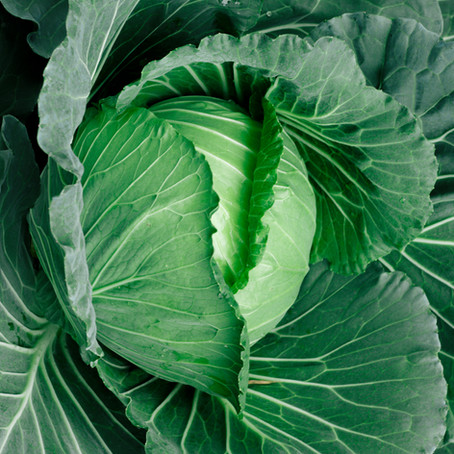 Collard Greens: Deeply Rooted